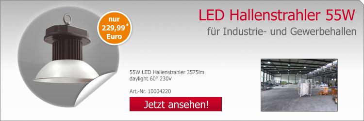 LED LED Hallenstrahler 55W